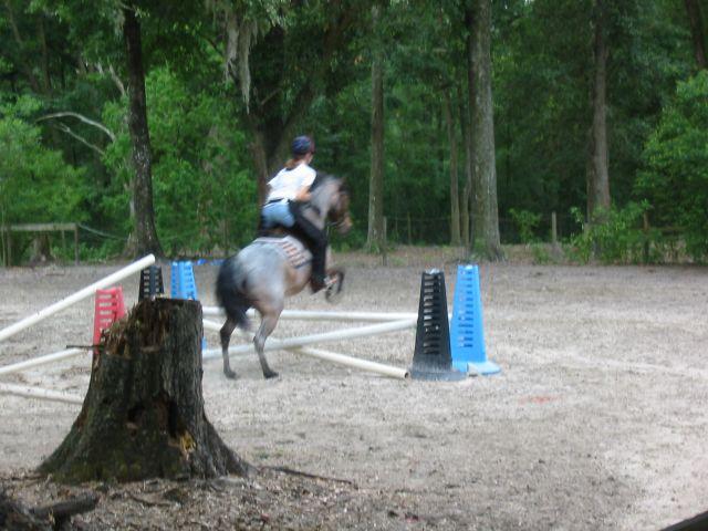 jumping1.jpg